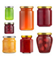 fruit jam jar glass isolated on white background vector image