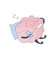 Brain Sleeping With Teddy Bear Comic Character vector image