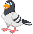 Cartoon funny pigeon isolated on white background vector image