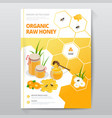 organic raw honey designe brochure abstract vector image