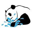 panda-splash-pw vector image