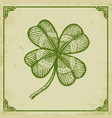 green clover on old paper vector image vector image