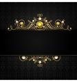 Jewellery black background vector image