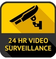 Video surveillance vector image