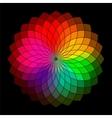 Rainbow style wheel Color Creative Abstract Flower vector image