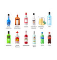 set of flat style elite alcohot bottle icons vector image