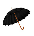 Black umbrella vector image