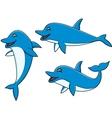 Dolphin cartoon vector image