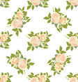 White rose pattern seamless vector image