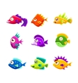 Colorful Cartoon Tropical Fish Collection vector image