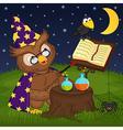 owl wizard vector image vector image
