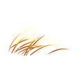 icon reed vector image vector image