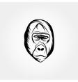 Head gorilla design template vector image