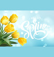 hello spring hand lettering with tulip flower vector image