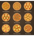 Different type of pizza vector image vector image