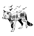 Double exposure silhouette of fox wildlife concep vector image