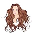 Face brunette long hair girl in sunglasses vector image