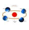 Cycle of seasons vector image vector image