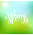 Hello Spring lettering design vector image