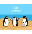 Hello Summer Funny Emperor Penguins Family vector image