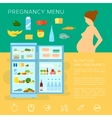 Pregnancy Menu Food Flat Style Infographic vector image
