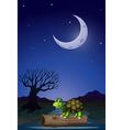 Night Turtle vector image vector image