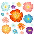 Big and small flowers vector image vector image