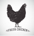 chicken and inscription vector image