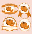 the yellow pumpkin vector image