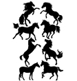silhouettes of horses vector image