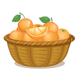 A basket full of oranges vector image vector image