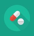 Medical Flat Icon Medical pills vector image