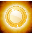 shining gold medal background vector image