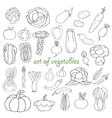 Doodle set of vegetables vector image