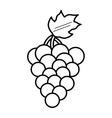 grapes healthy fruit icon vector image
