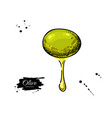 olive with oil drop hand drawn vector image