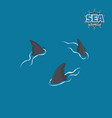 shark fins on a blue background danger fish vector image