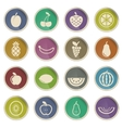 Fruits simply icons vector image