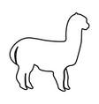 alpaca black icon vector image