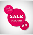sale special offer banner vector image vector image