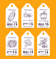 price tag set with doodle sketched fruits vector image
