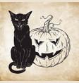 black cat sitting with halloween pumpkin over old vector image