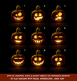Dark Jack O Lantern Cartoon 9 Fanny n Goof vector image