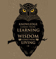 knowledge comes from learning wisdom comes from vector image