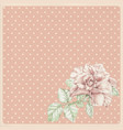 dotted rose background with ros vector image