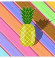 Fresh Ripe Pineapple on Colorful Planks vector image