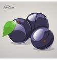 Cartoon sweet plum on grey background vector image