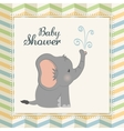 Baby Shower elephant Pastel design vector image
