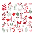 Christmas floral drawing set with holly vector image