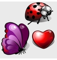 Heart purple butterfly and funny ladybug vector image